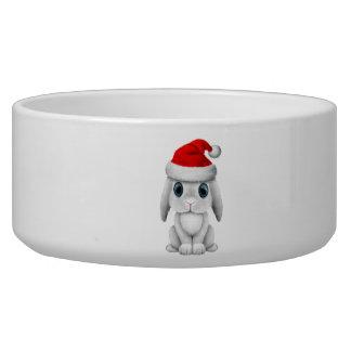 White Baby Bunny Wearing a Santa Hat