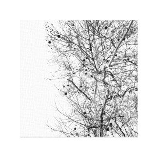 White bark seeded nut tree nature photo xild xhild canvas print