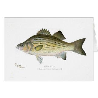 White Bass Card