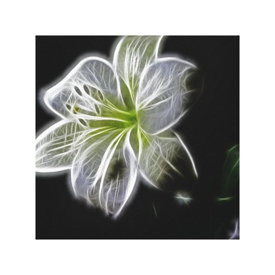 White Beauty Canvas Art