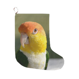 White Bellied Caique Parrot Large Christmas Stocking