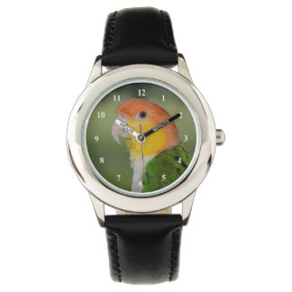 White Bellied Caique Parrot Outdoors Watch