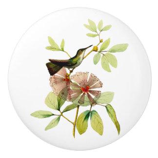 White Bellied Emerald Hummingbird Ceramic Knob