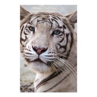 White Bengal Tiger Customized Stationery