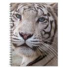 White Bengal Tiger Notebook