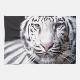 White Bengal Tiger Photography Hand Towels