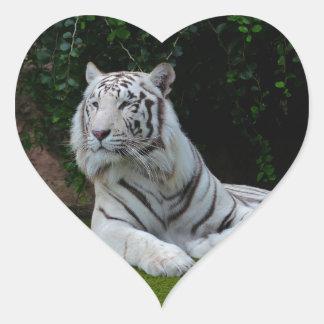 White Bengal Tiger Heart Sticker