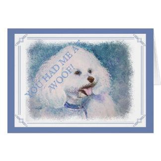 WHITE BICHON FRISE CARD