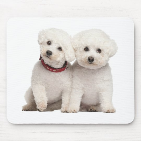 White Bichon Frise Puppy Dog Computer Mousepad