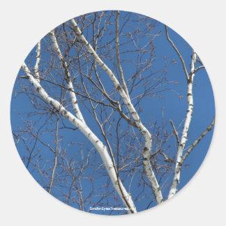 White Birch Blue Sky Nature Photo Sticker Label