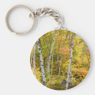 White Birches in Autumn Button Keychain