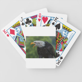 White Black Eagle during Daytime Bicycle Playing Cards