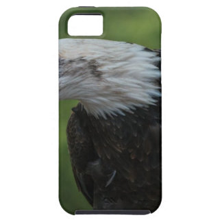 White Black Eagle during Daytime Case For The iPhone 5