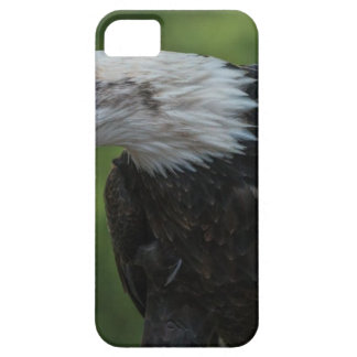 White Black Eagle during Daytime iPhone 5 Cover
