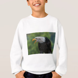 White Black Eagle during Daytime Sweatshirt