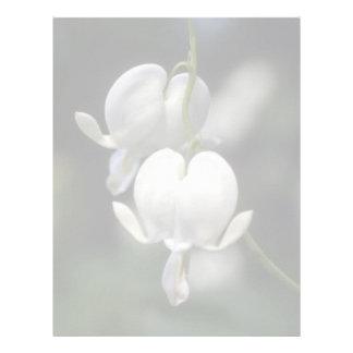 white Bleeding Heart, (Dicentra Spectabilis) flowe Letterhead