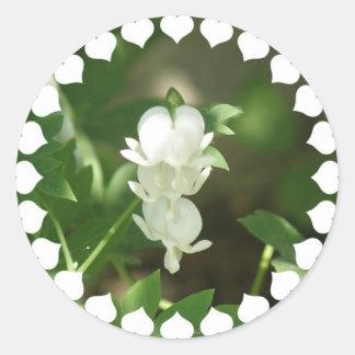 White Bleeding Heart Sticker