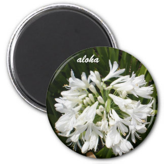 white blooms aloha magnet