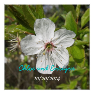 White Blossom Personalized Wedding Perfect Poster