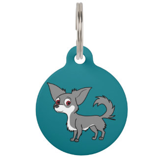 White & Blue Chihuahua with Long Hair Pet Name Tag