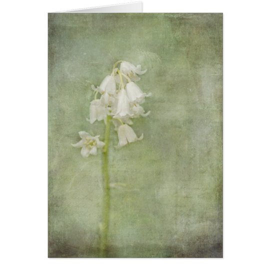 White Bluebell Greeting Card
