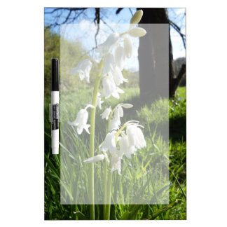 White Bluebells Dry Erase Board