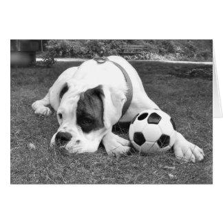 White Boxer Soccer Card