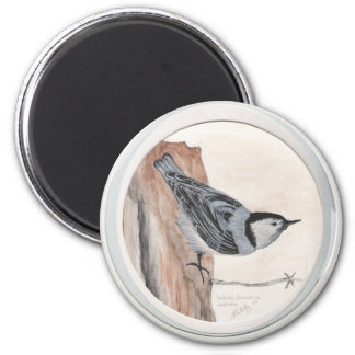 white breasted nuthatch 2 inch round magnet