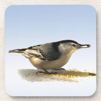 White-breasted Nuthatch Beverage Coaster
