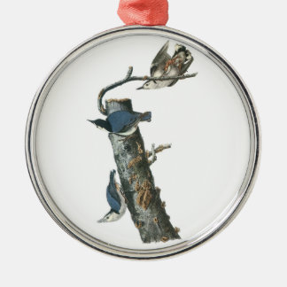 White-breasted Nuthatch by Audubon Metal Ornament