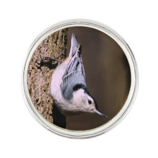 White-Breasted Nuthatch Lapel Pin