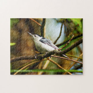 White-breasted Nuthatch Puzzle