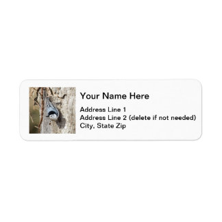 White-breasted Nuthatch Return Address Label