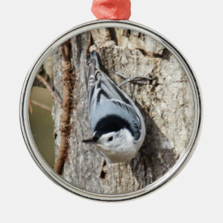 White-breasted Nuthatch Silver-Colored Round Ornament