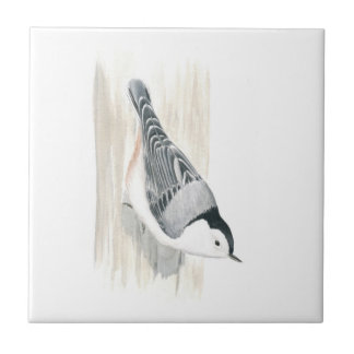 White-breasted Nuthatch Tile