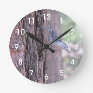 White-breasted Nuthatch Wallclocks