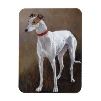 White/brindle Greyhound Dog Art Magnet