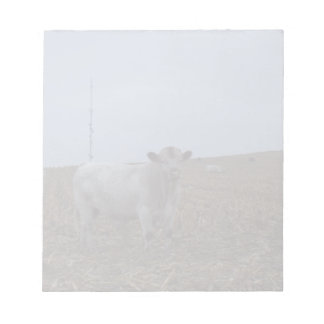 White Bull in a newly harvested Iowa Corn Field Notepads