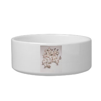 White Bunny Rabbit Pet Bowl