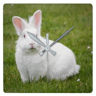 White bunny rabbit square wall clock