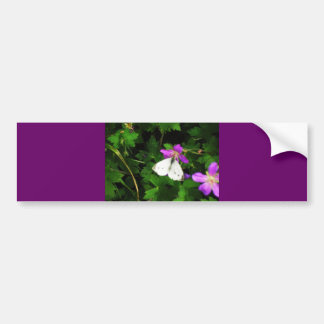 White Butterfly on Purple Flowers Bumper Sticker