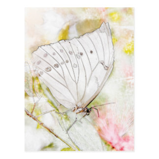 White Butterfly Watercolor Postcard