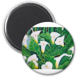 White Calla Lilies Magnet