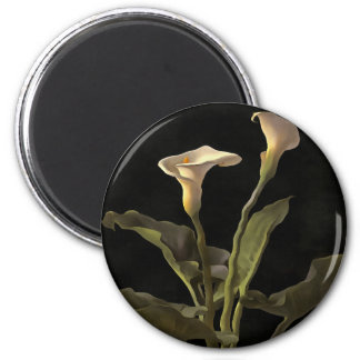 White Calla Lilies On A Black Background 2 Inch Round Magnet