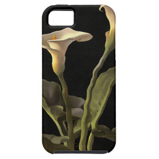 White Calla Lilies On A Black Background iPhone 5 Covers