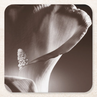 White Calla Lily Flower Black Background Square Paper Coaster