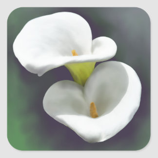 White Calla Lily Flowers Square Sticker