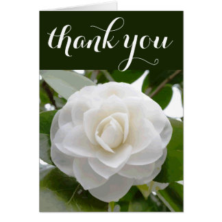 White Camellia Watercolor Fine Floral Thank You Card