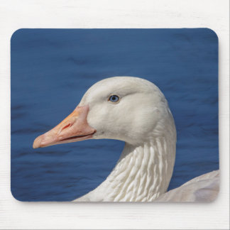 White Canadian Goose Mouse Pad