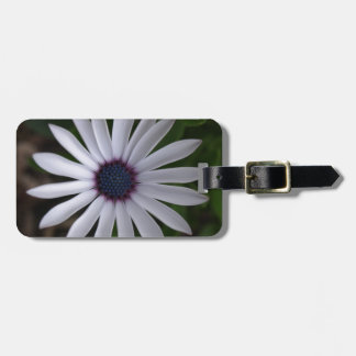 WHITE CAPE DAISY FLOWER Luggage Tag